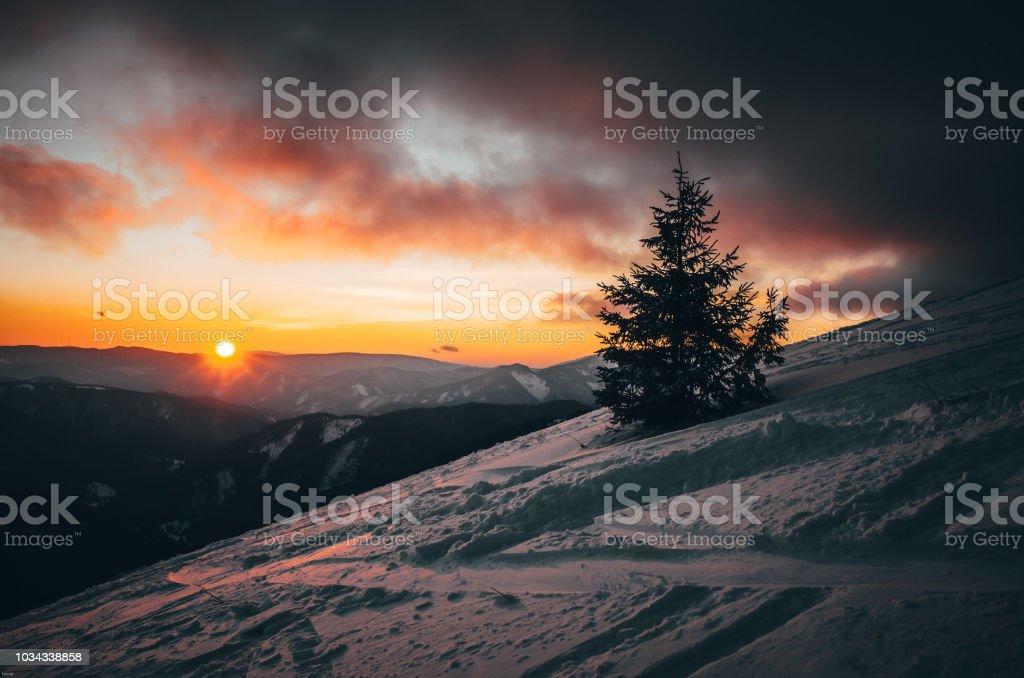 Weihnachten Bilder Bearbeiten.Bearbeiten Sie Wintersonnenuntergang In Natur Weihnachten Und