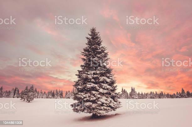 Winter sunset picture id1044861008?b=1&k=6&m=1044861008&s=612x612&h=05tb jrxut sasa5kf4qt idjv7eafqagxttbqpwozg=