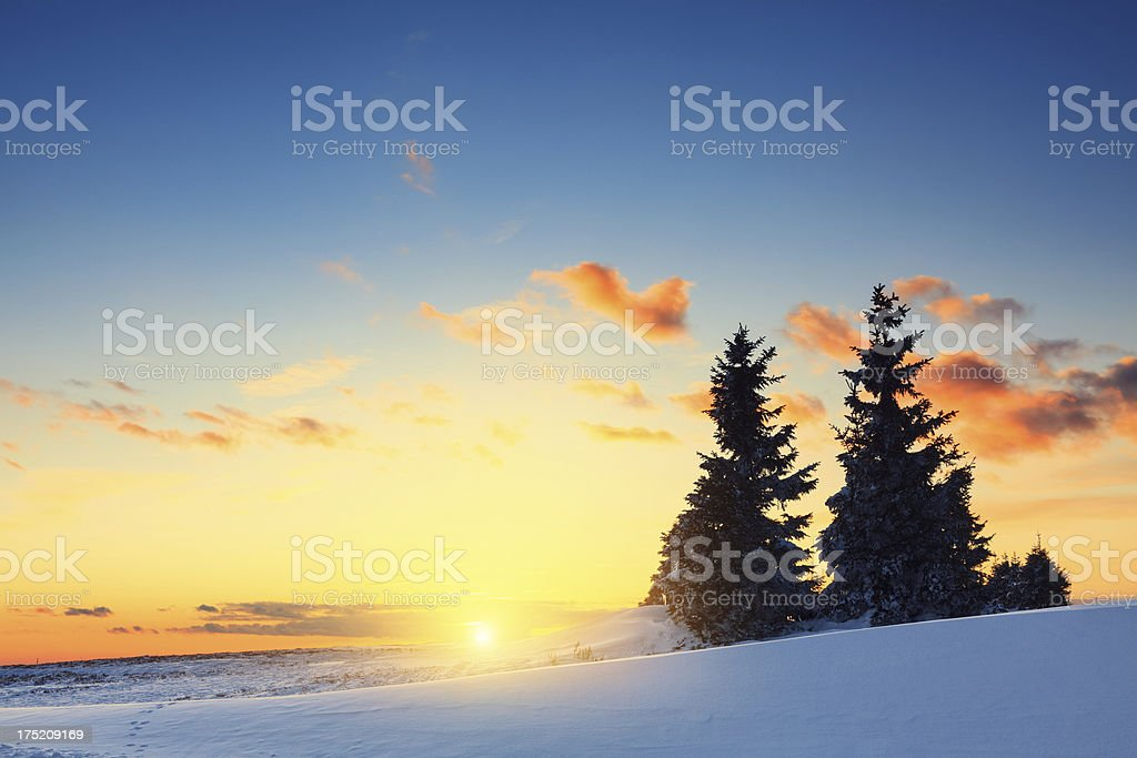 Winter Sunset royalty-free stock photo