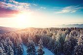 Idyllic winter scene with snowcapped trees at sunrise.