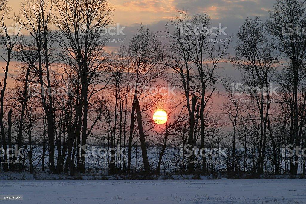 Winter Sunset royalty-free stock photo