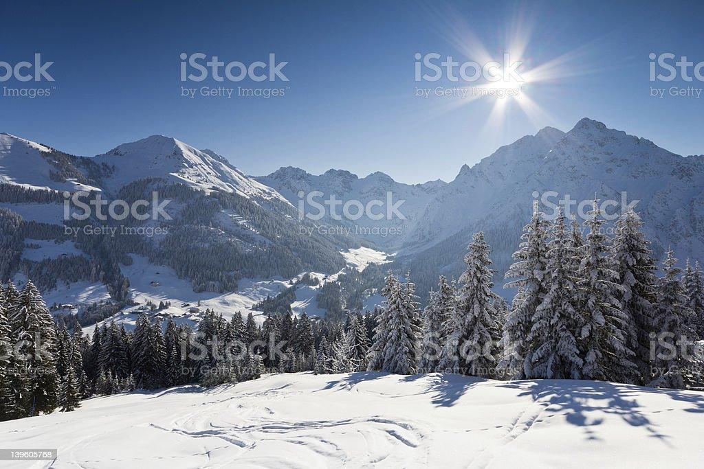 Winter sunshine stock photo