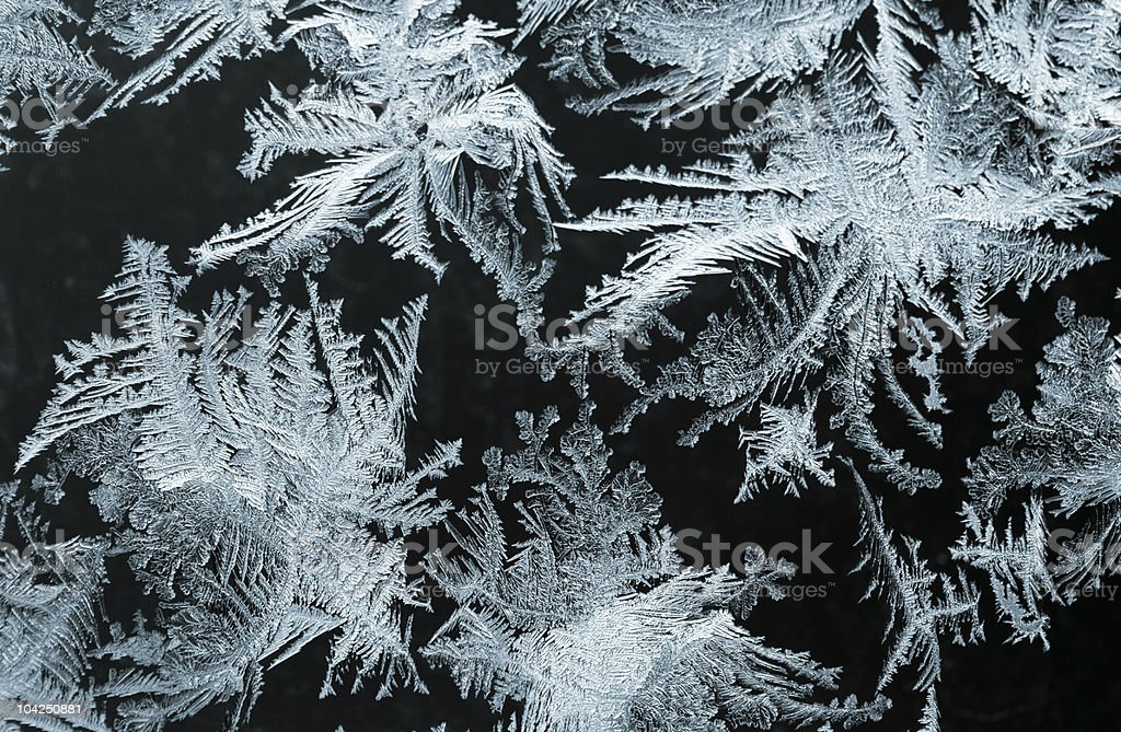 Winter tale royalty-free stock photo