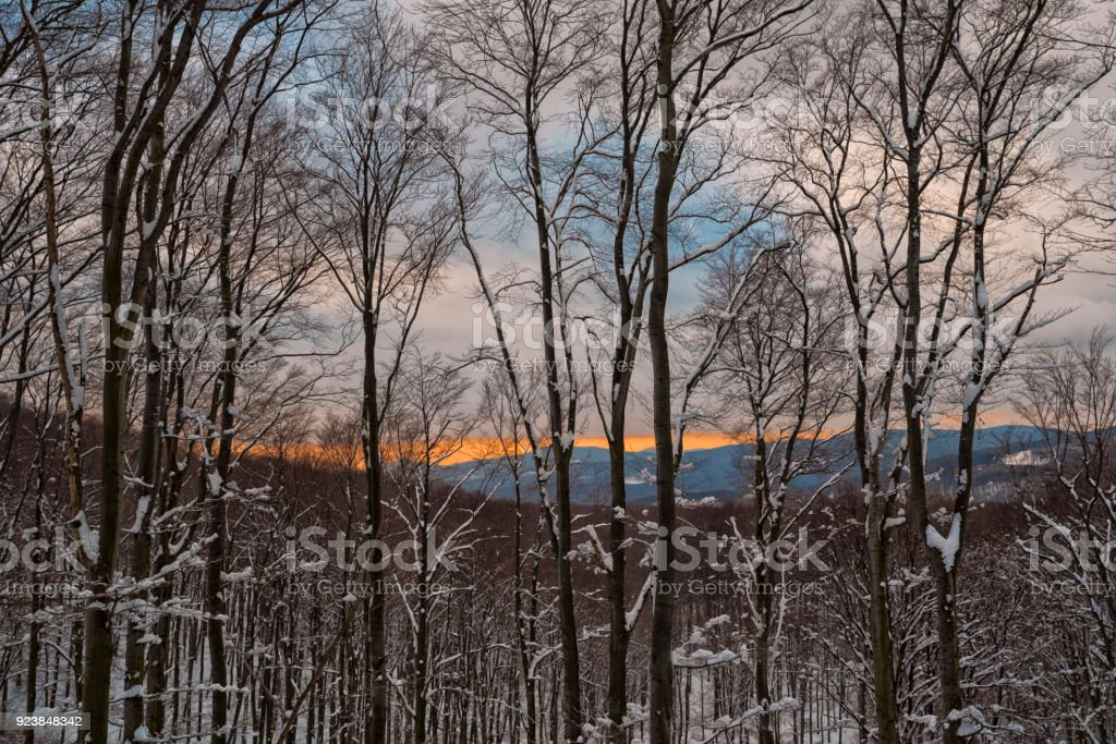 Winter tale stock photo