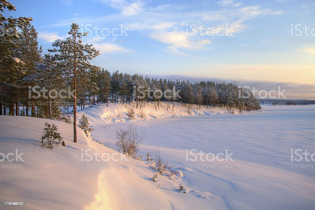 Winter time in forest lake. royalty-free stock photo