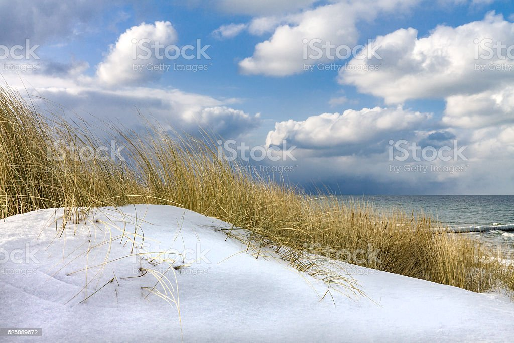 Winter time on shore of the Baltic Sea – Foto