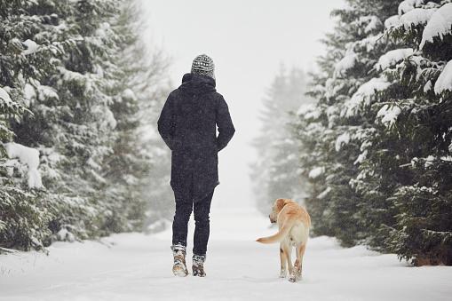 istock Winter time 499570474