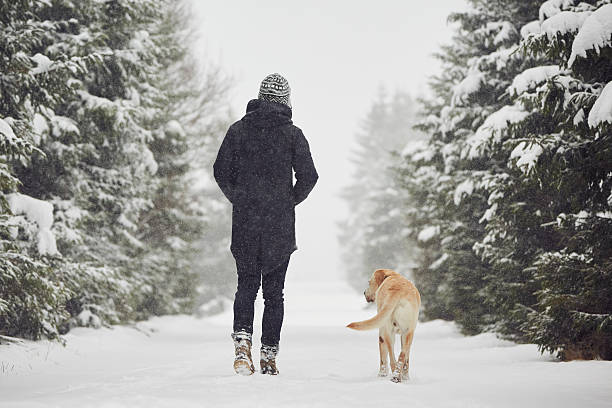 winter time - warm clothing stock photos and pictures