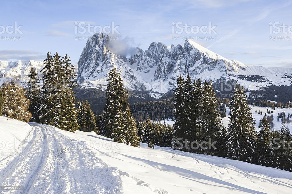 Winter trail along Seiser Alm, against Sasslong group stock photo