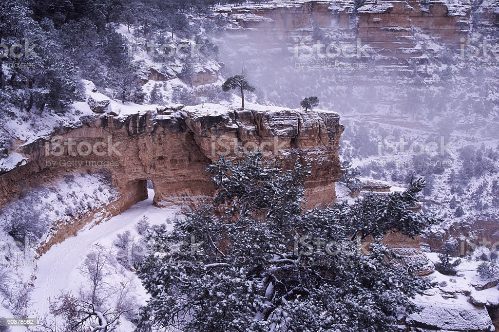 Winter Trail In Grand Canyon Arizona Stock Photo Download