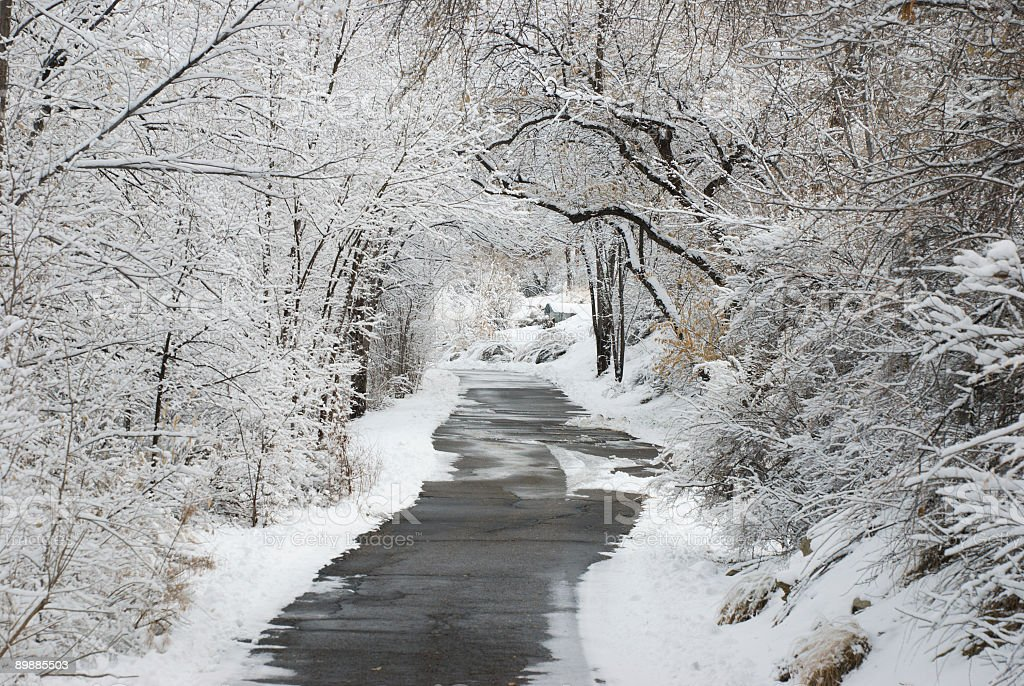 Winter trail through the park royalty-free stock photo
