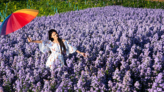 Winter travel relax vacation concept, Young happy traveler asian woman with dress sightseeing on Margaret Aster flowers field in garden. Lifestyle Concept