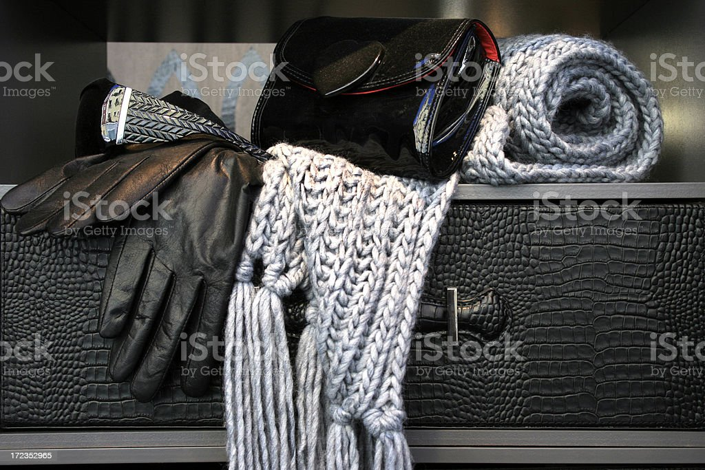 winter traveller royalty-free stock photo