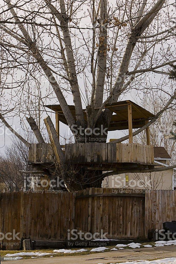 Winter Treehouse stock photo