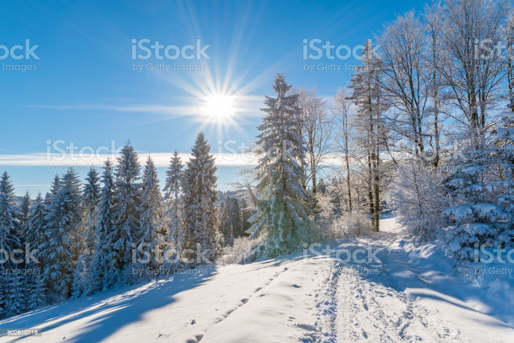 Winter trees and road in Beskid Sadecki Mountains with sun on blue sky, Poland stock photo