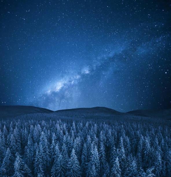 Winter Under The Stars – Foto
