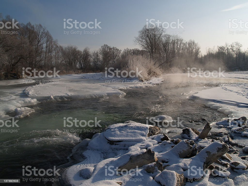 Winter Ussuri stock photo