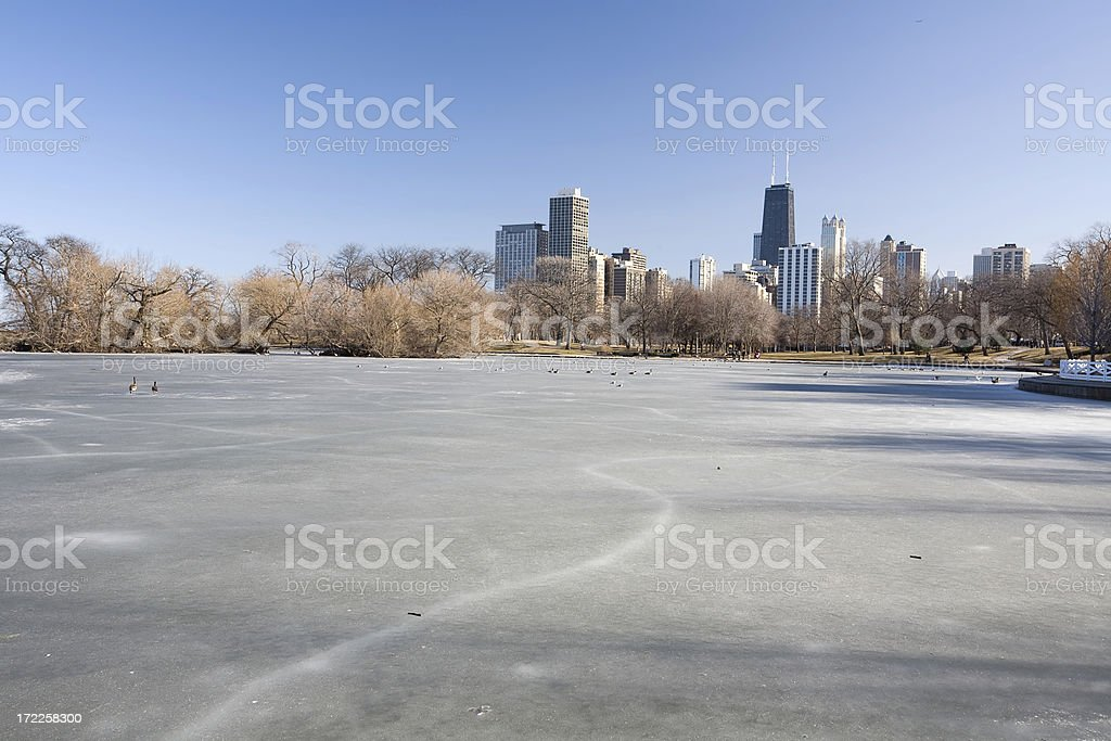 Winter View, Chicago royalty-free stock photo