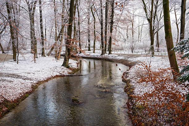 winter-blick auf den englischen garten in münchen, deutschland - münchen weather stock-fotos und bilder