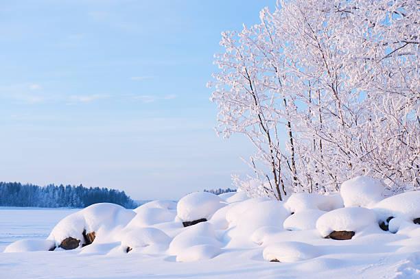 Winter view of lake shore stock photo
