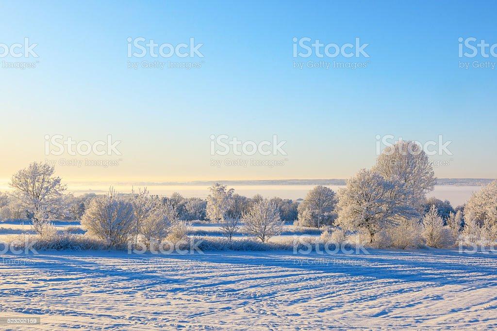 Winter view stock photo