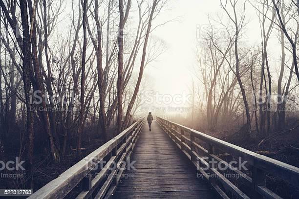 Photo of Winter Walk