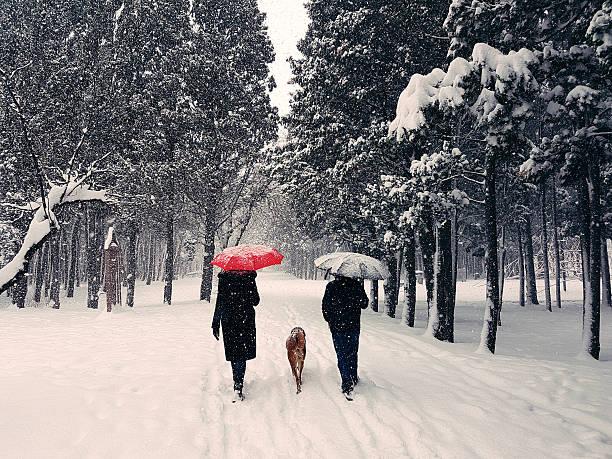 Winter walk picture id639253312?b=1&k=6&m=639253312&s=612x612&w=0&h=lgdqi63iazhxluqnewsh6la dqb ftmh3qc52b1eynm=