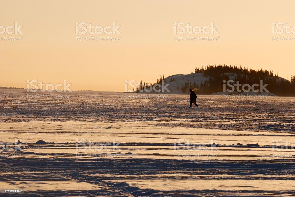 Winter Walk, Yellowknife. royalty-free stock photo