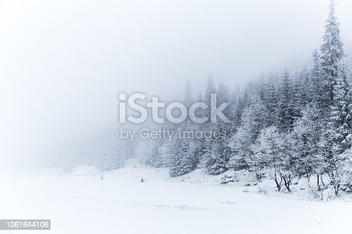 1061644120 istock photo Winter white forest with snow, Christmas background 1061644106