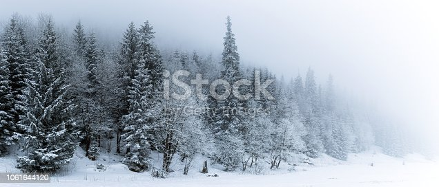 1061644120 istock photo Winter white forest with snow, Christmas background 1061644120
