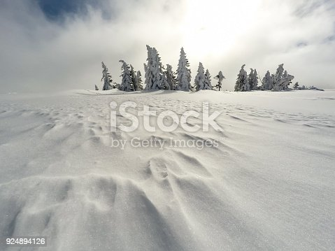1061644120 istock photo Winter white forest with snow, Christmas background 924894126