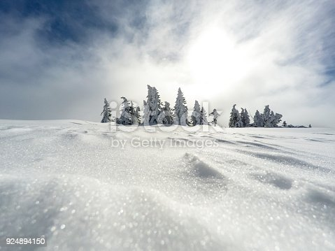 1061644120 istock photo Winter white forest with snow, Christmas background 924894150