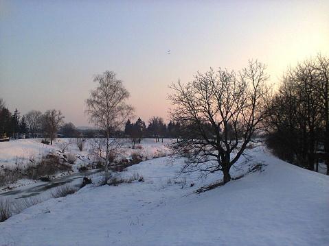 Winter White Snow Nostalgic Twilight Frozen Riverbank Bare Trees Silhouette