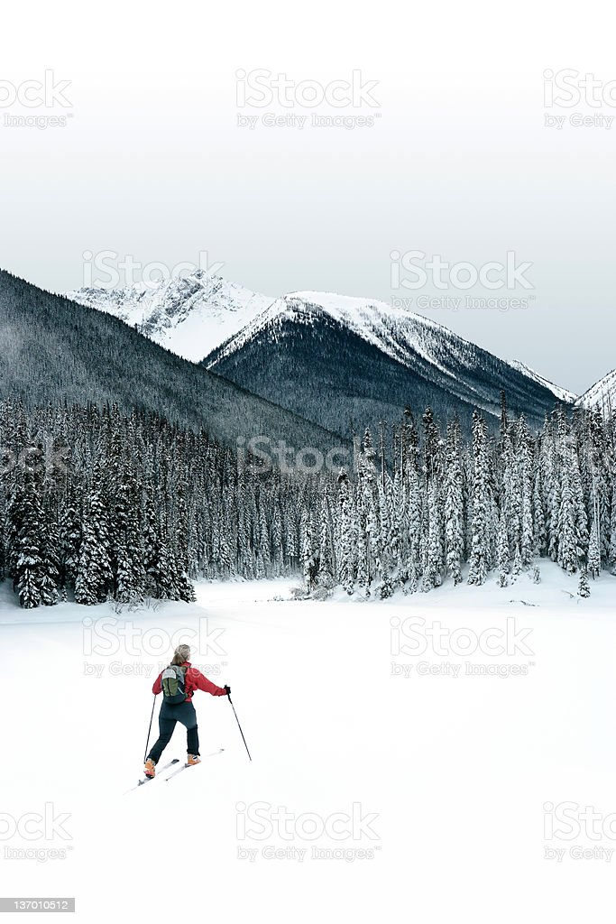 XXL winter wilderness adventure royalty-free stock photo