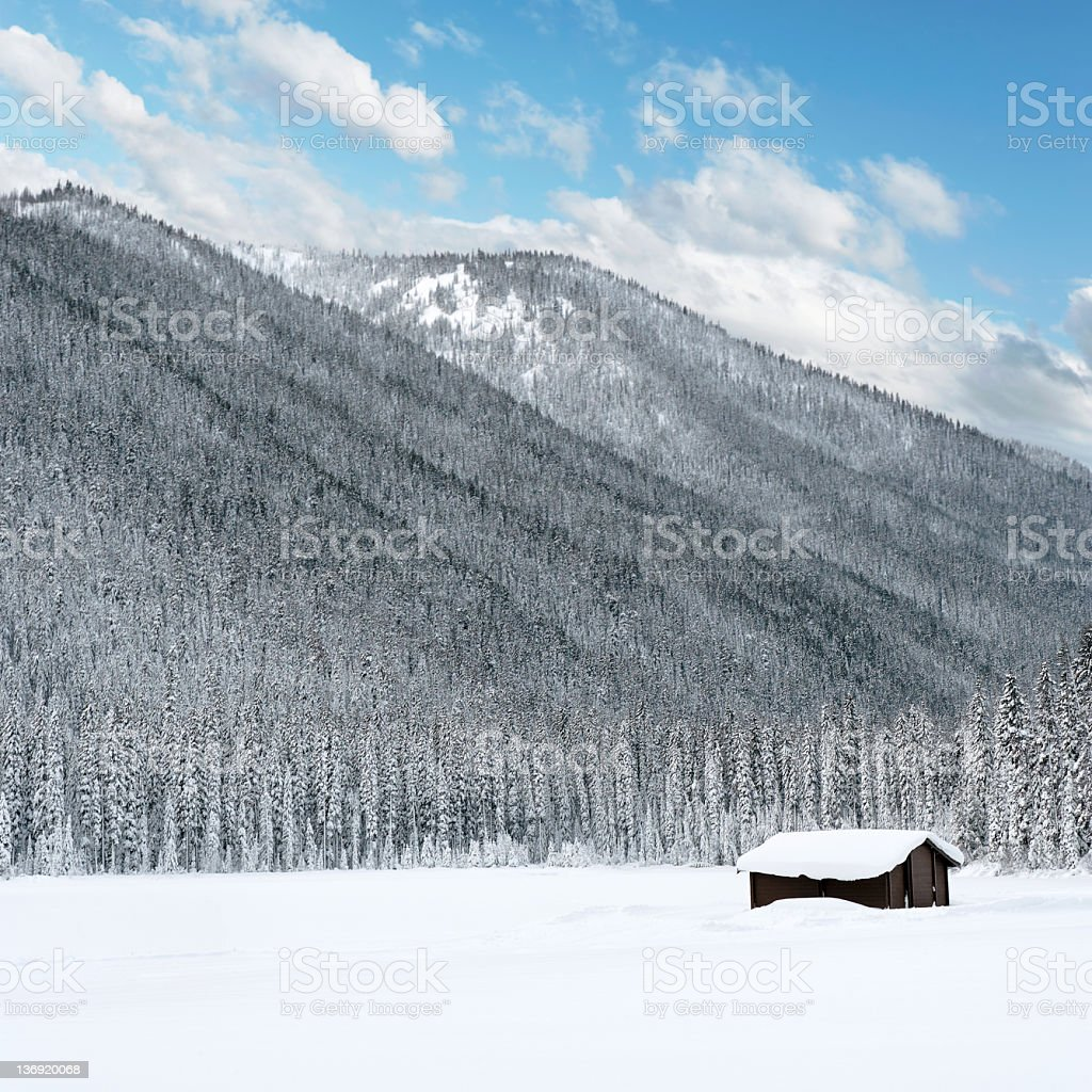 XL winter wilderness cabin royalty-free stock photo