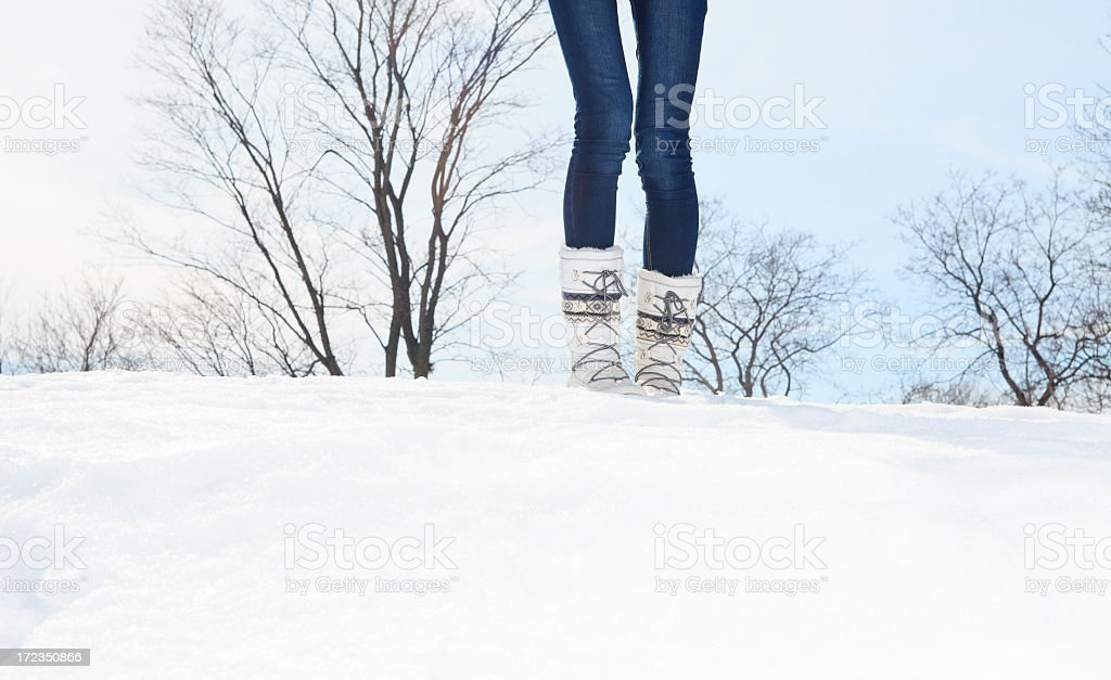 Hermosa mujer de invierno de funda foto de stock libre de derechos