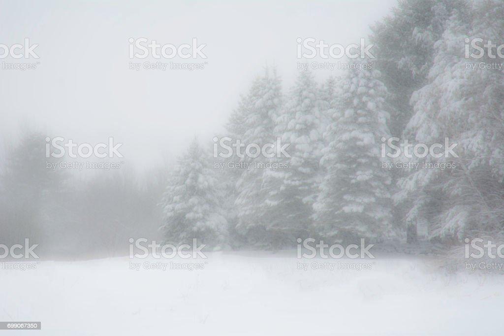 winter wonder land New England stock photo