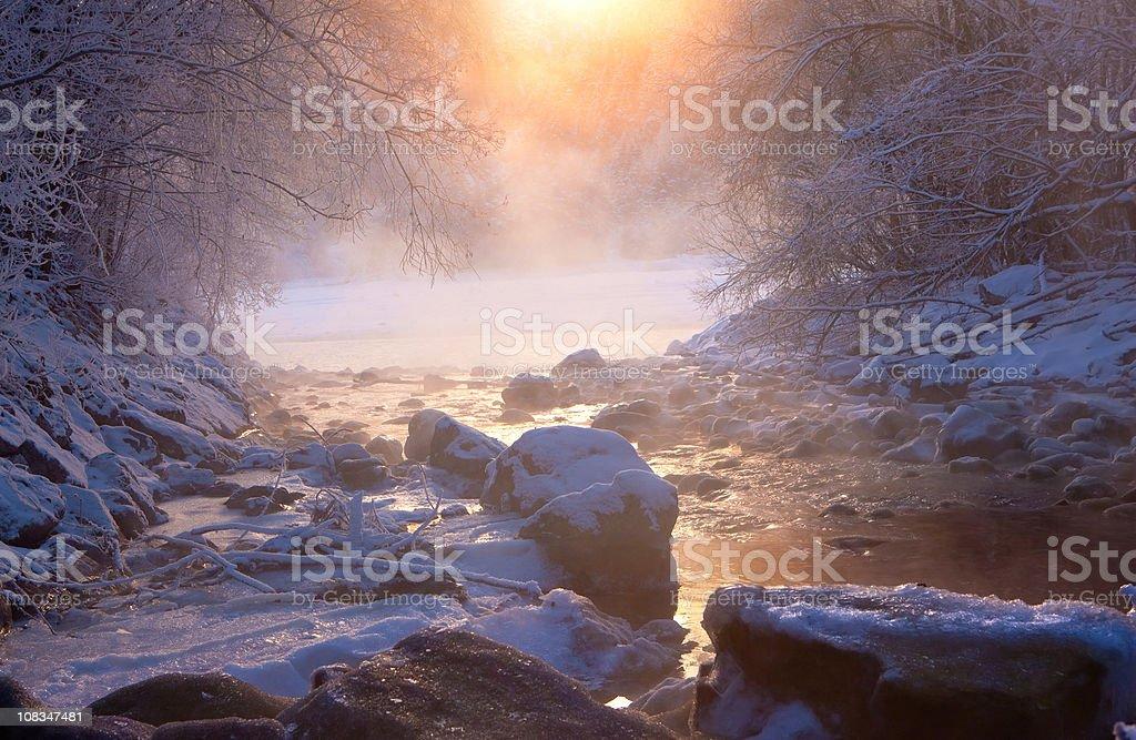winter wonder land royalty-free stock photo