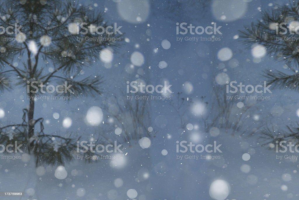 Winter Wonderland background royalty-free stock photo