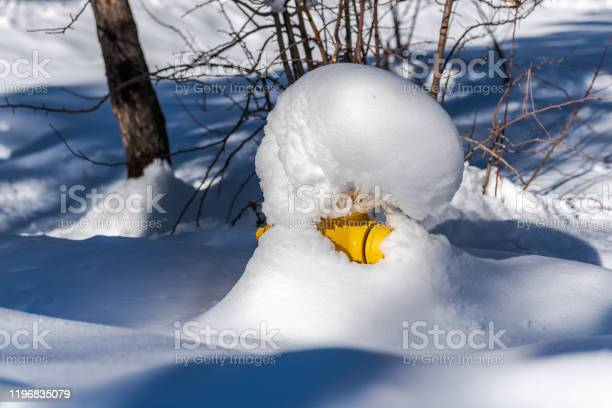 Photo of Winter wonderland in mountain community.
