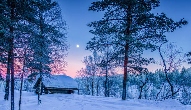 winter wonderland in scandinavia at sunset - tundra imagens e fotografias de stock