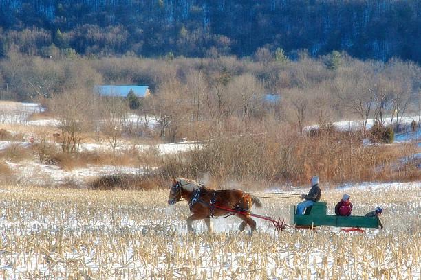 El país de las maravillas de invierno - foto de stock