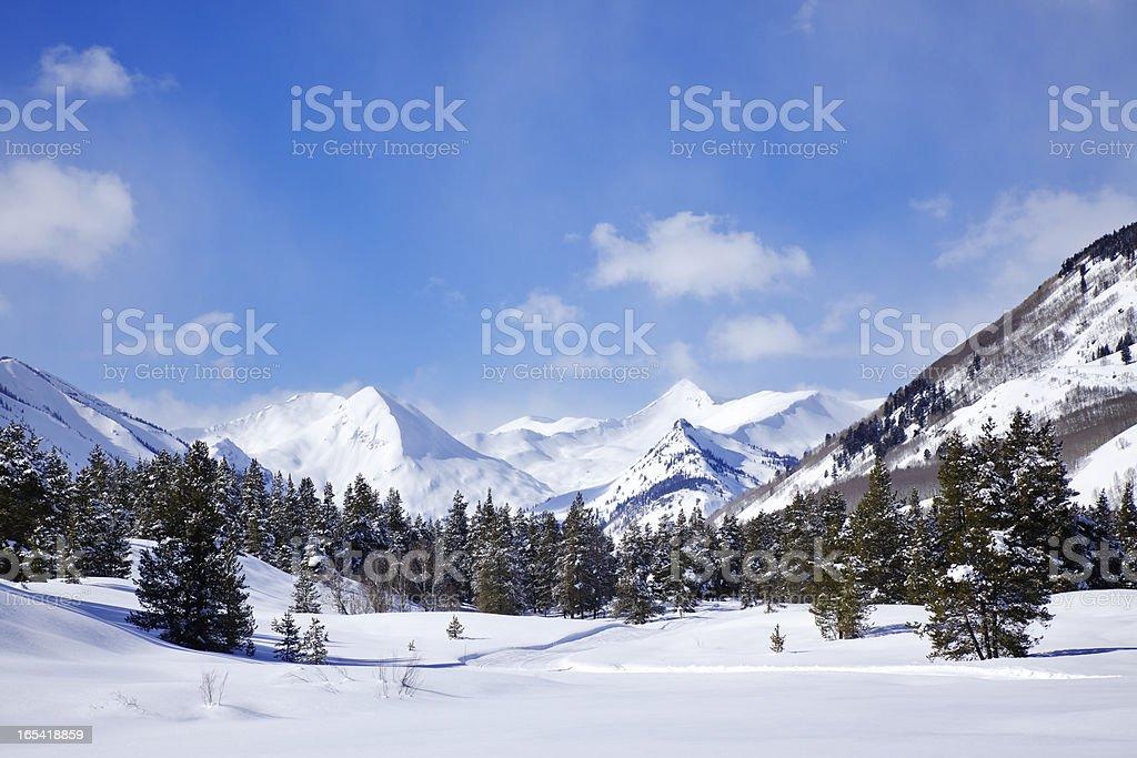 Winter Wonderland royalty-free stock photo
