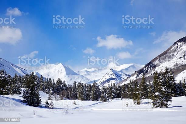 Photo of Winter Wonderland