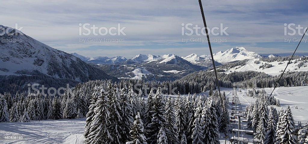 Winter wonderland - Photo