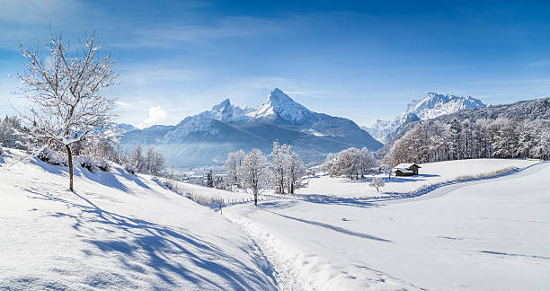 Winter wonderland scenery with hiking trail in the Alps Beautiful winter scenery with trees and mountain tops in the Alps on a sunny day with blue sky and clouds. bavarian alps stock pictures, royalty-free photos & images