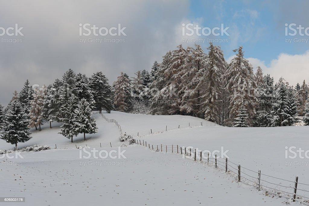 winterCrossFence stock photo