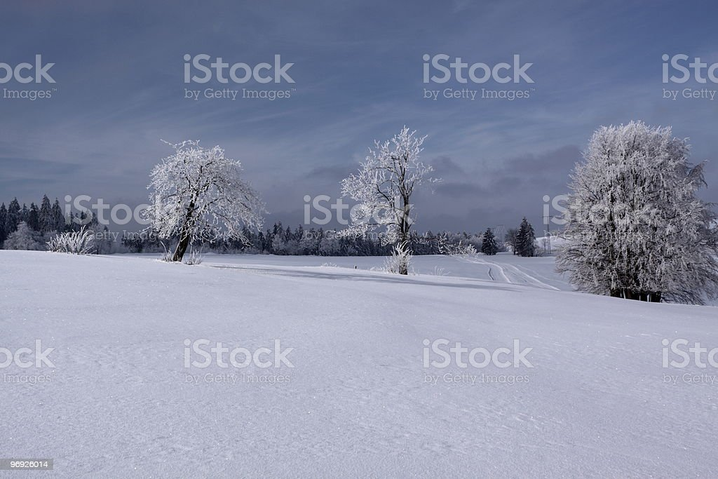 winterdream in Thuringia royalty-free stock photo