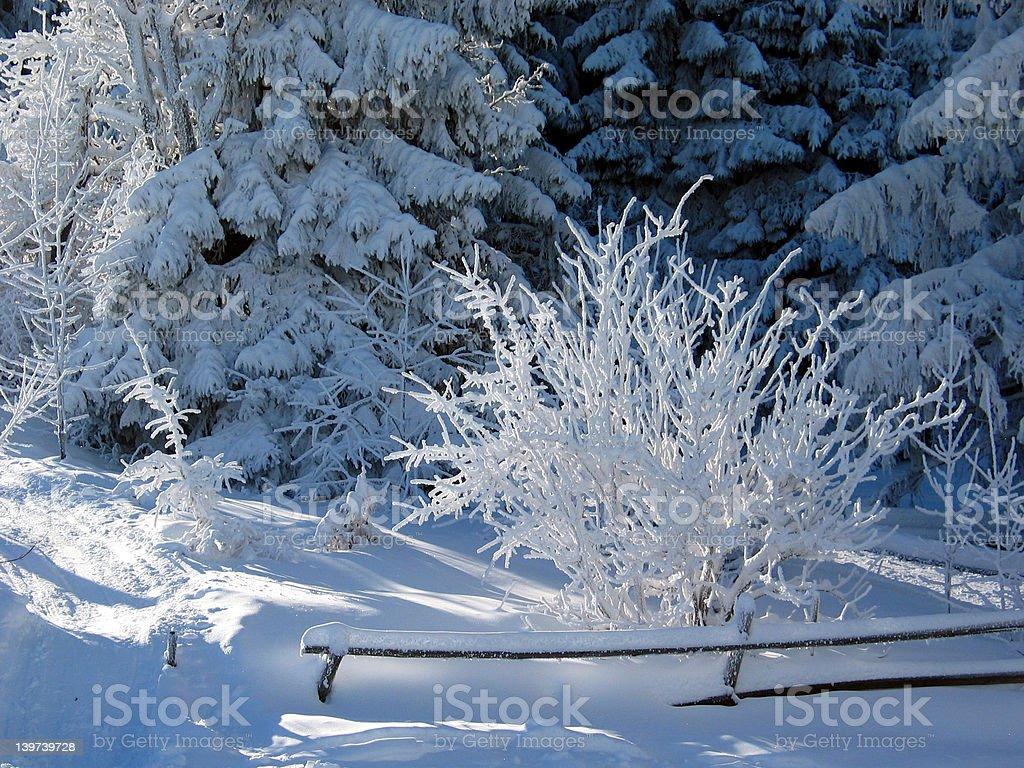 winterdream royalty-free stock photo