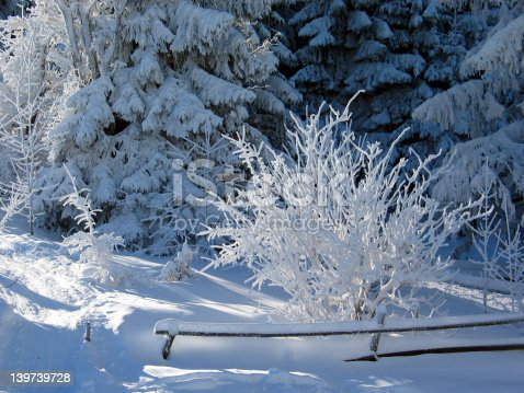 istock winterdream 139739728